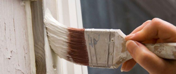 Should I Paint My House?